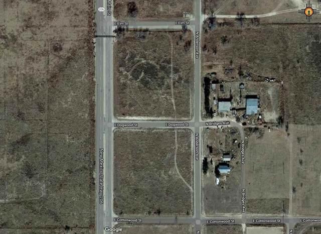 Main St, Tatum, NM 88267 (MLS #20205066) :: Rafter Cross Realty