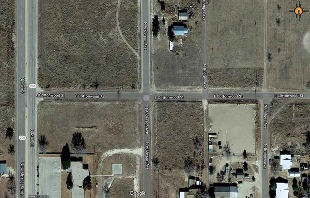 Anderson Ave, Tatum, NM 88267 (MLS #20205067) :: Rafter Cross Realty