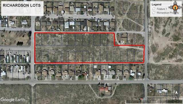 3301-3806 W Richardson Ave., Artesia, NM 88210 (MLS #20205078) :: Rafter Cross Realty