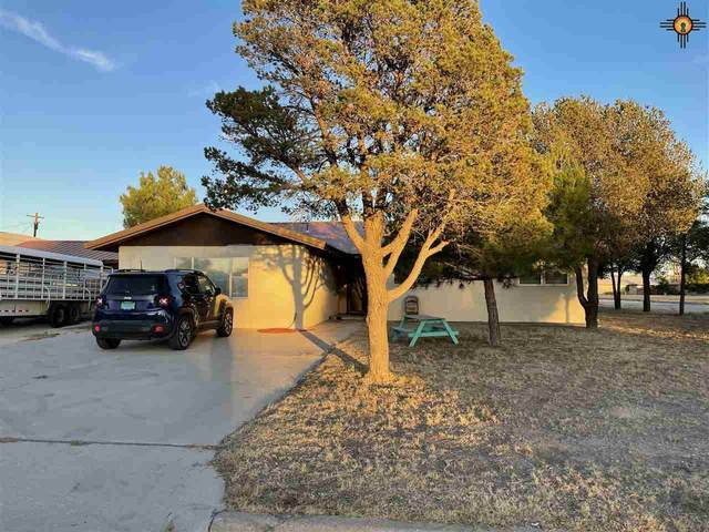 224 S Ave C, Tatum, NM 88267 (MLS #20205097) :: Rafter Cross Realty