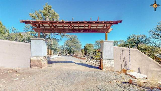 17 Choctaw Trl, San Jose, NM 87565 (MLS #20205287) :: The Bridges Team with Keller Williams Realty