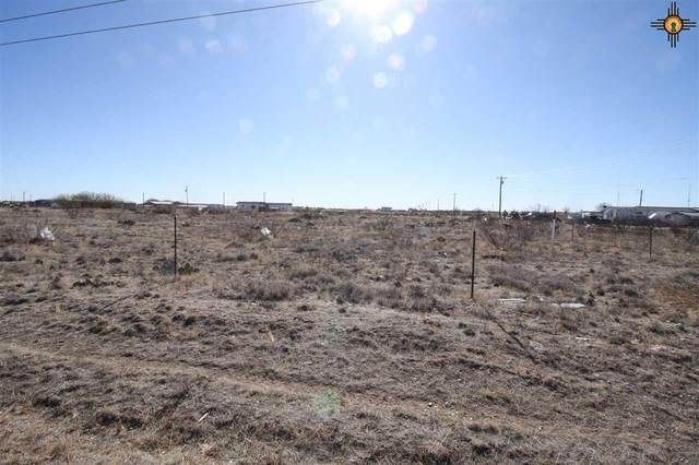 tbd Water Avenue, Lovington, NM 88260 (MLS #20205386) :: Rafter Cross Realty