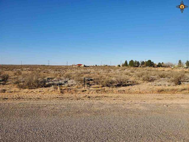 8317 Molinar Road, Carlsbad, NM 88220 (MLS #20205434) :: Rafter Cross Realty