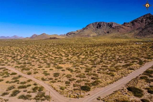 Lot 3 Conejo Road, Rodeo, NM 88056 (MLS #20205479) :: The Bridges Team with Keller Williams Realty