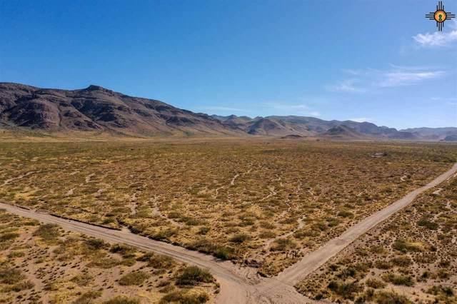 Lot 7 Conejo Road, Rodeo, NM 88056 (MLS #20205480) :: The Bridges Team with Keller Williams Realty