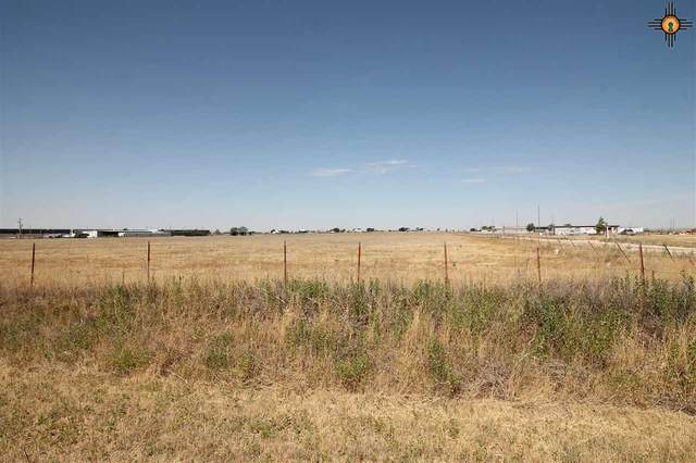 0000 Curry Road D, Texico, NM 88135 (MLS #20205547) :: Rafter Cross Realty
