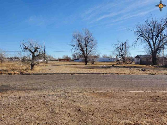 703 Hondo, Clovis, NM 88101 (MLS #20205672) :: Rafter Cross Realty