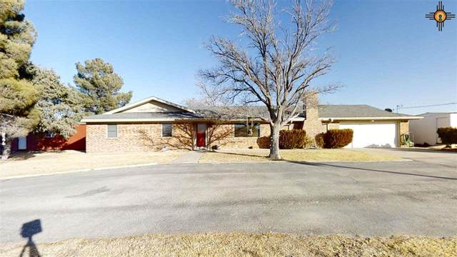 2022 N Cottrell St, Hobbs, NM 88240 (MLS #20210066) :: Rafter Cross Realty