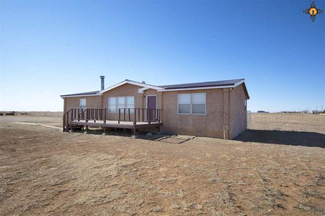 1215 Curry Road 9, Clovis, NM 88101 (MLS #20210121) :: Rafter Cross Realty