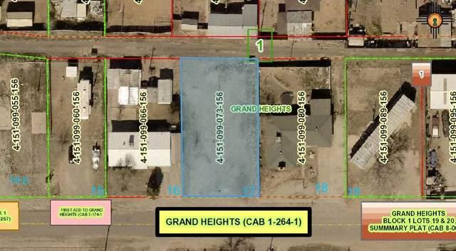 E 2312 W Missouri Avenue, Artesia, NM 88210 (MLS #20210218) :: Rafter Cross Realty