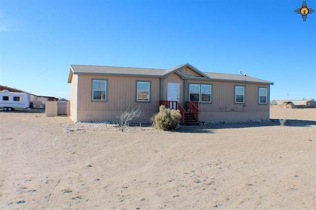 7201 N Palo Verde, Hobbs, NM 88242 (MLS #20210239) :: Rafter Cross Realty