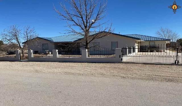 2102 A Violet Street, Carlsbad, NM 88220 (MLS #20210296) :: Rafter Cross Realty