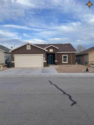1836 Amber Drive, Carlsbad, NM 88220 (MLS #20210324) :: Rafter Cross Realty