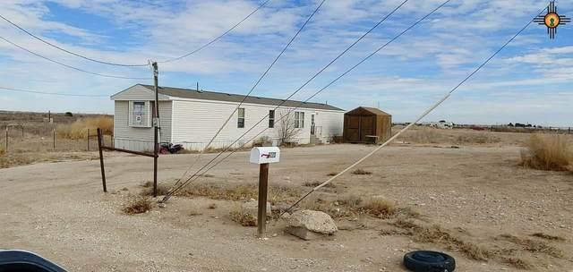 2008 Jasmine Street, Carlsbad, NM 88220 (MLS #20210346) :: Rafter Cross Realty