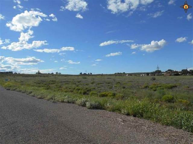 Lot 12 Townsend, Roswell, NM 88201 (MLS #20210351) :: Rafter Cross Realty