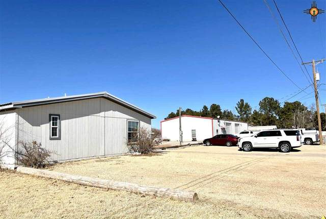 1218 E Orchard Lane, Carlsbad, NM 88220 (MLS #20210374) :: Rafter Cross Realty