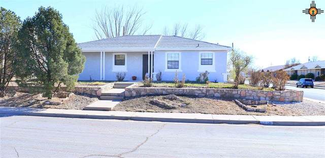 1036 Fern Dr, Roswell, NM 88203 (MLS #20210379) :: Rafter Cross Realty