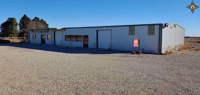 7315,7403,7411 Norris Road, Carlsbad, NM 88220 (MLS #20210404) :: Rafter Cross Realty