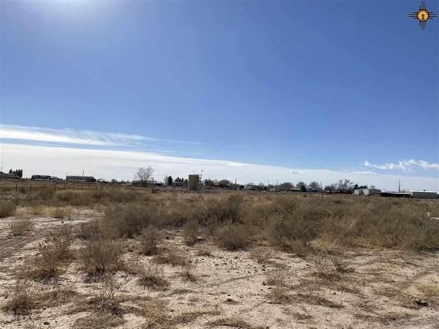 Lot 14 Heath Street Rural, Artesia, NM 88210 (MLS #20210598) :: Rafter Cross Realty