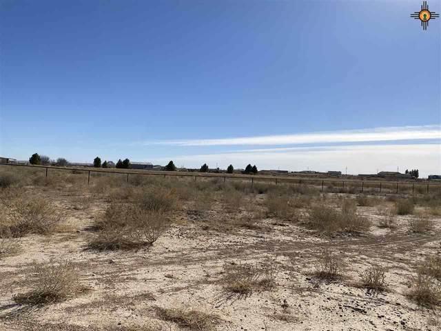 Lot 15 Heath Street Rural, Artesia, NM 88210 (MLS #20210600) :: Rafter Cross Realty