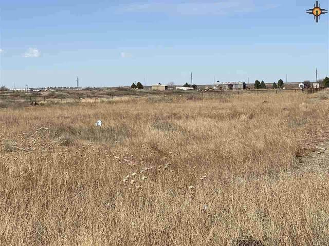 Lot 18 Heath Street Rural, Artesia, NM 88210 (MLS #20210601) :: Rafter Cross Realty