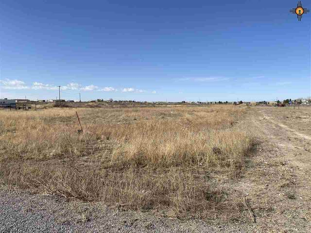 Lot 20 Heath Street Rural, Artesia, NM 88210 (MLS #20210603) :: Rafter Cross Realty