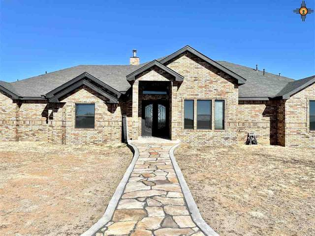 1056 Curry Road 13, Clovis, NM 88101 (MLS #20210630) :: Rafter Cross Realty