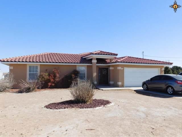 5004 La Placita Drive, Carlsbad, NM 88220 (MLS #20210686) :: Rafter Cross Realty