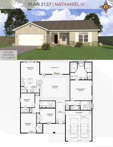 1026 Malibu Rd, Carlsbad, NM 88220 (MLS #20210691) :: Rafter Cross Realty