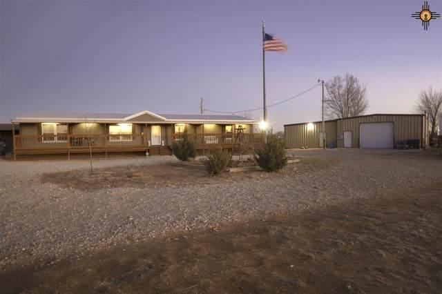 1873 Loma Vista, Portales, NM 88130 (MLS #20210706) :: Rafter Cross Realty