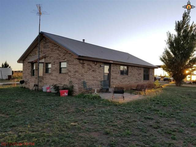 4173A Rr 18, Elida, NM 88116 (MLS #20210717) :: Rafter Cross Realty