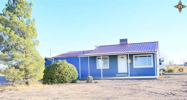 75 Smokey Trail Cir., Artesia, NM 88210 (MLS #20210736) :: Rafter Cross Realty