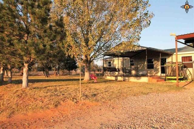 205 N Ninth, Melrose, NM 88124 (MLS #20210746) :: Rafter Cross Realty