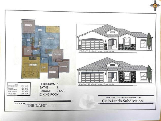 407 Pima Drive, Carlsbad, NM 88220 (MLS #20210826) :: Rafter Cross Realty
