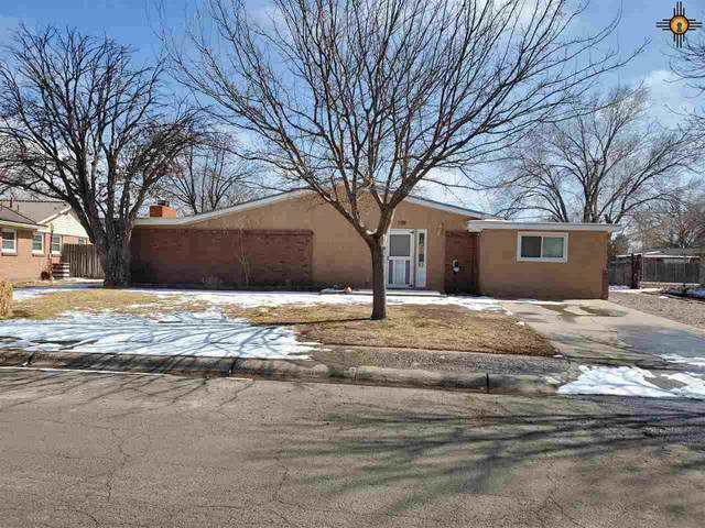 109 Linda Circle, Roswell, NM 88201 (MLS #20210853) :: Rafter Cross Realty