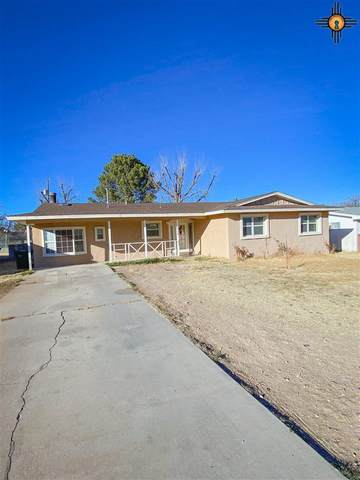 2914 Mountain View, Carlsbad, NM 88220 (MLS #20210906) :: Rafter Cross Realty