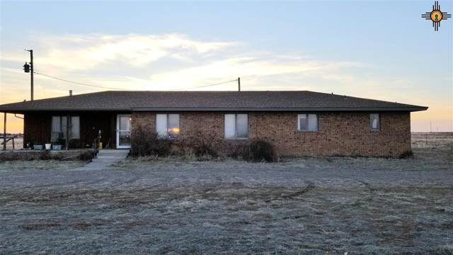 1386 Curry Road M, Clovis, NM 88101 (MLS #20211086) :: Rafter Cross Realty