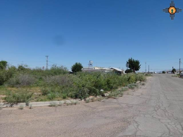 000 S 12th And W Maple, Deming, NM 88030 (MLS #20211119) :: The Bridges Team with Keller Williams Realty