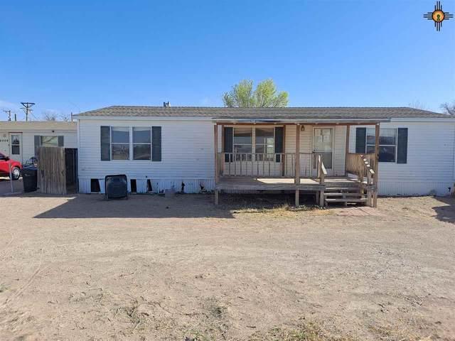2211 Sandyridge Dr., Carlsbad, NM 88220 (MLS #20211557) :: Rafter Cross Realty