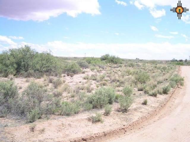 2 Casa Colorado Lots, BELEN, NM 87002 (MLS #20211656) :: The Bridges Team with Keller Williams Realty