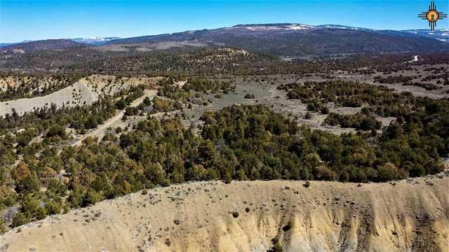 TBD Highway 64, Tierra Amarilla, NM 87875 (MLS #20211826) :: The Bridges Team with Keller Williams Realty
