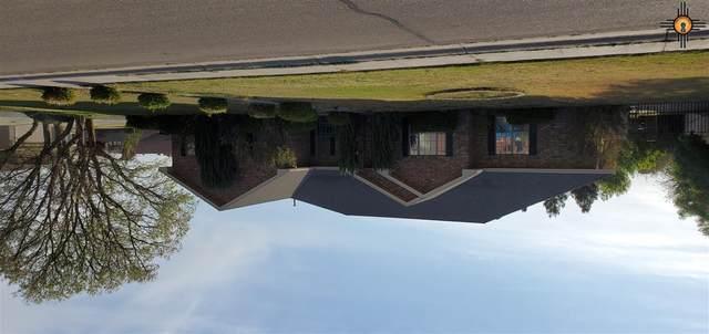 1902 Sentry Circle, Carlsbad, NM 88220 (MLS #20211958) :: Rafter Cross Realty