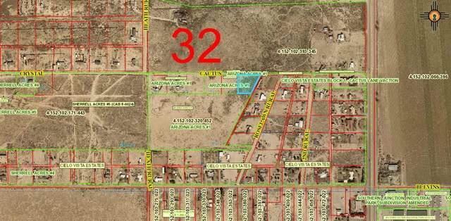 W Roselawn Ave Rural, Artesia, NM 88210 (MLS #20212002) :: Rafter Cross Realty