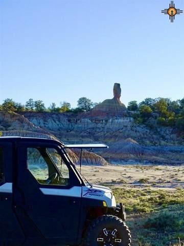 000 Highway 595, REGINA, NM 87046 (MLS #20213019) :: The Bridges Team with Keller Williams Realty