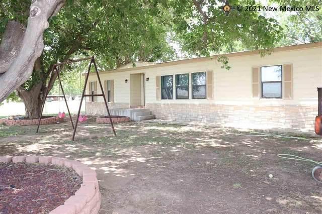 208 Rabbit Hill Road, Loving, NM 88256 (MLS #20213208) :: Rafter Cross Realty