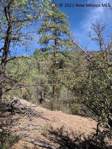 5 W Rivers Rd, Reserve, NM 87830 (MLS #20213213) :: The Bridges Team with Keller Williams Realty