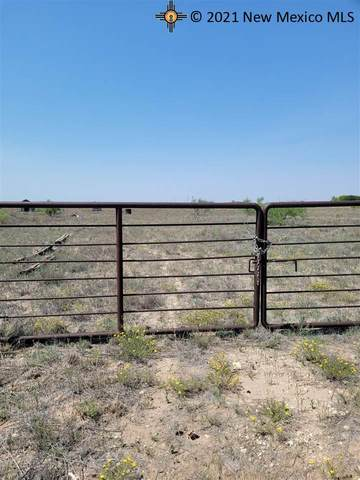 TBD W Pinson, Hobbs, NM 88240 (MLS #20213223) :: Rafter Cross Realty