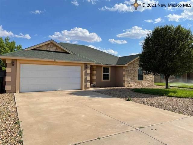 221 Carmel, Clovis, NM 88101 (MLS #20213245) :: Rafter Cross Realty