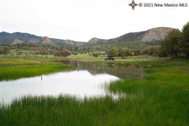 000 Highway 84/64, Chama, NM 87520 (MLS #20213336) :: The Bridges Team with Keller Williams Realty