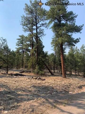 54 Elk View Circle, Quemado, NM 87829 (MLS #20213477) :: The Bridges Team with Keller Williams Realty